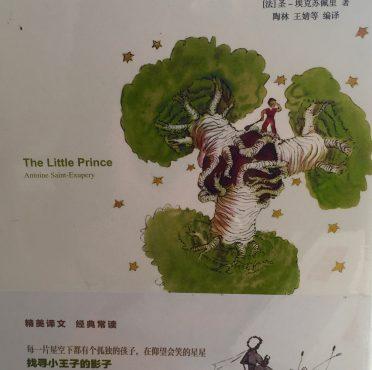 little-prince-7539978666